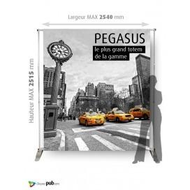PEGASUS - PHOTOCALL recto ou recto-verso